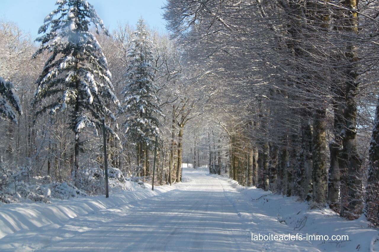 millevaches en hiver