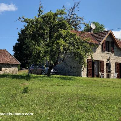 Maison en pierre a vendre